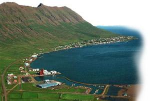 Guðmundur Rafnkell Gíslason - Hausmynd